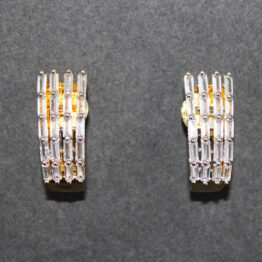 CZ Gold+Silver Plated Earrings 401792
